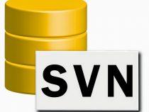 Hướng dẫn sử dụng SVN trong dự án
