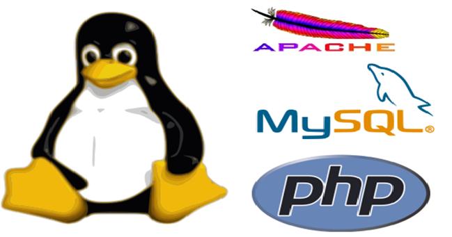 Học lập trình php cơ bản