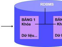 Tổng quan về cơ sở dữ liệu