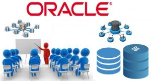 hoc-co-so-du-lieu-oracle-server-3